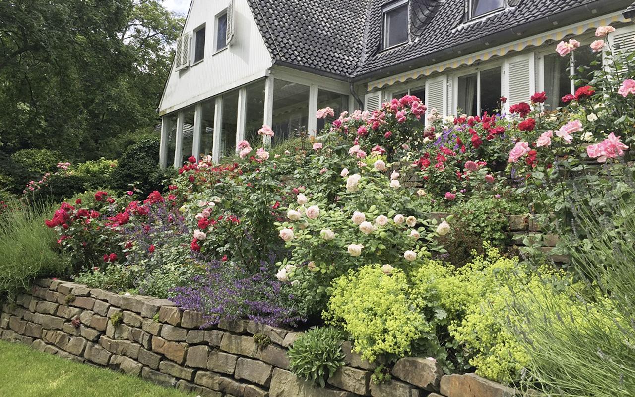 Zylka Gartenarchitektur Landhaus an der Erftmündung 1